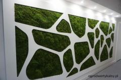 zielona sciana z mchu plaskiego
