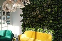 ogrod pionowy