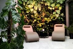 ogrod wertykalny w salonie