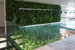 piętrowa zielona sciana