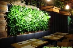 ogrod wertykalny w restauracji