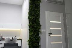 zielona sciana w salonie kosmetycznym