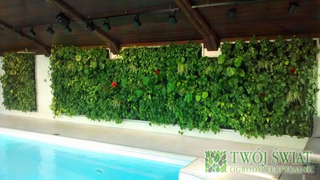 ogród wertykalny na basenie