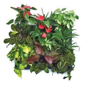 florafelt-vertical-garden-planter-12-pocket-5