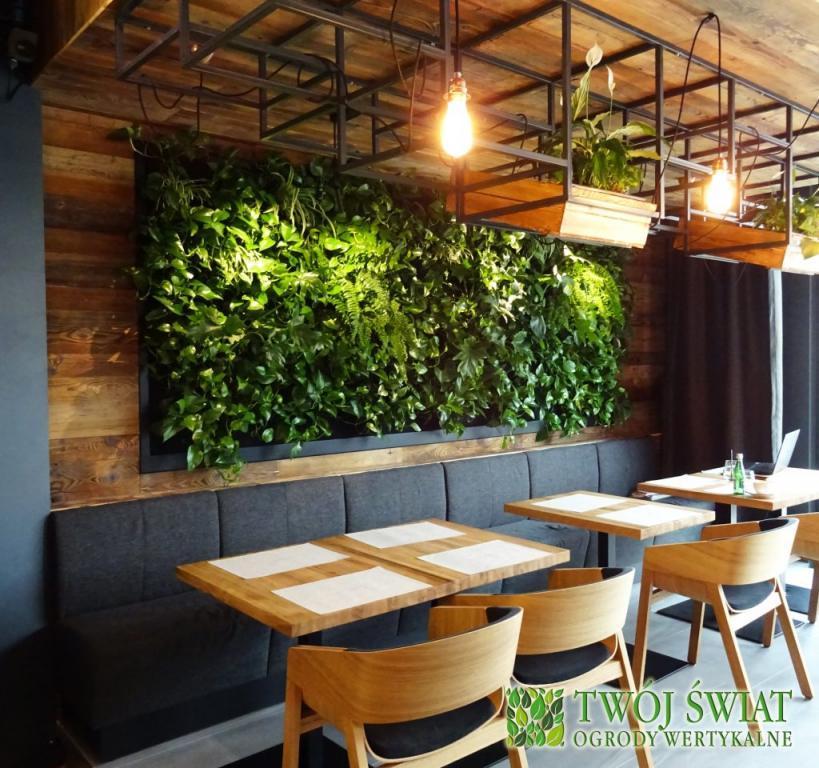zielona ściana w polaczeniu z drewnem