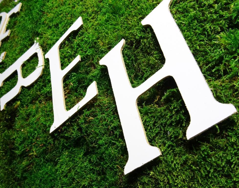 logo z mchu plaskiego