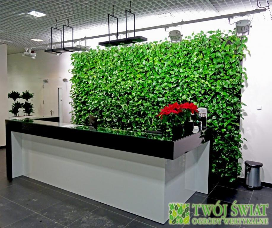 zielona ściana NIDEC