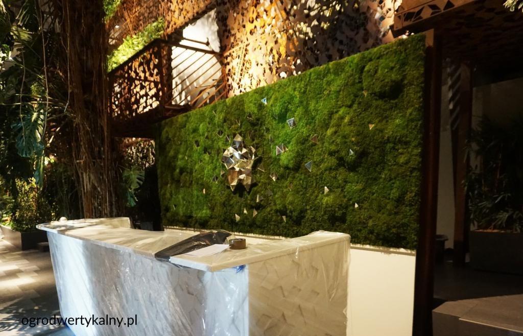 zielona ściana w barze