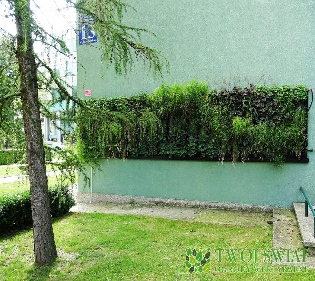lublin-zielona-sciana-zewnętrzna-polnocna-l-1024x915