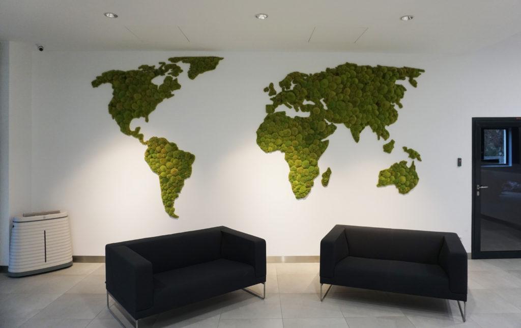 mapa świata z mchu