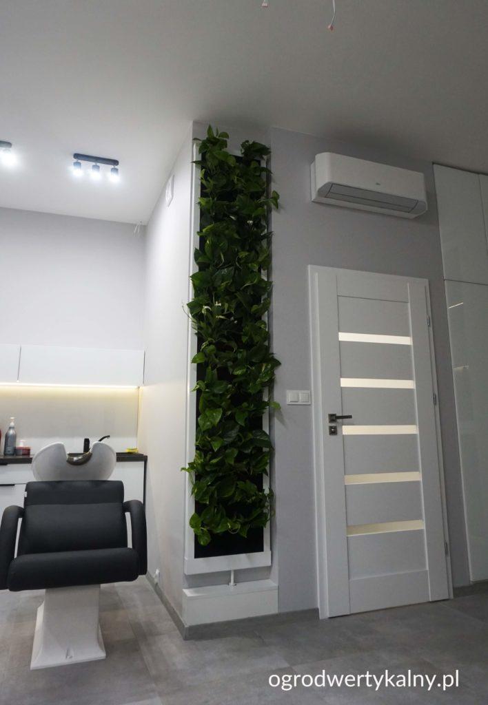 ogrod wertykalny w salonie kosmetycznym