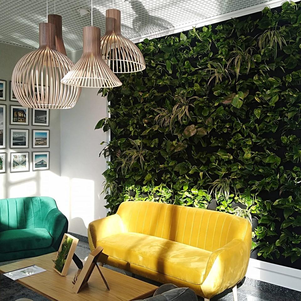 zielona sciana w strefie relaksu