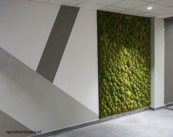 zielona- sciana z mchu poduszkowego