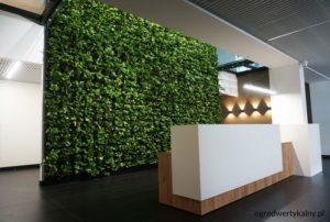 zielona-sciana-w-biurze-300x202