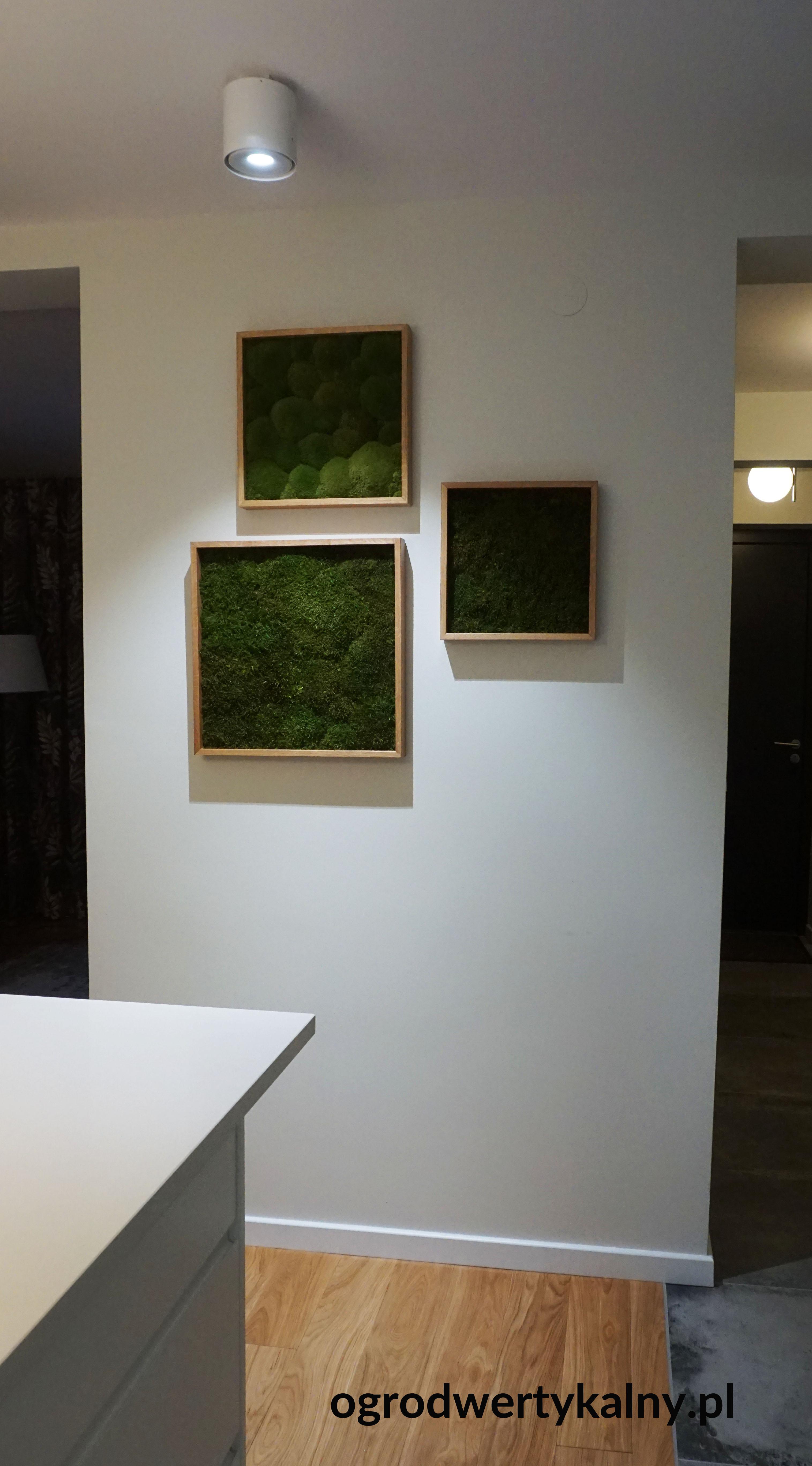 obrazy z mchu